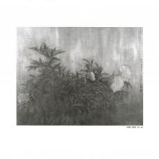江宏偉-趙秀煥-14