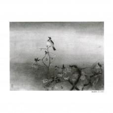 江宏偉-趙秀煥-09